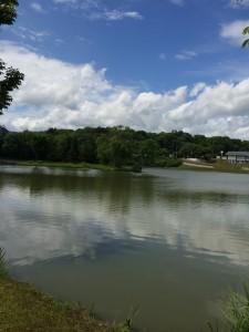 鶴沼公園キャンプ場の人工湖