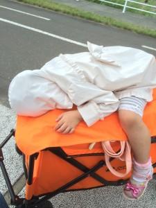 ドッペルギャンガーキャリーワゴンに子供を載せてみた