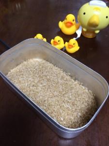 メスティンで玄米を炊く方法