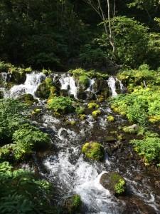 京極ふきだし公園の湧き水