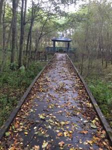 古山貯水池オートキャンプ場の散策路