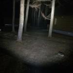 苫小牧アルテンキャンプ場にて、超明るいペンライト!ThruNiteTN12で狐狩り!?