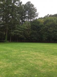 北海道安平町鹿公園での広場