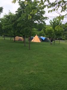 北海道安平町鹿公園のキャンプ場は広い!