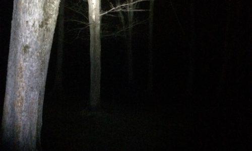 北海道心霊スポットでソロキャンプ