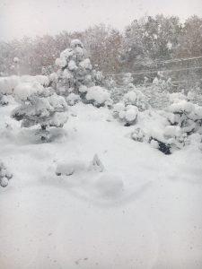 北海道札幌市11月観測史上初の豪雪