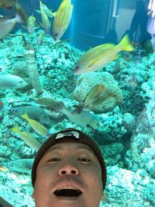 キャンプ王が水族館に現れる