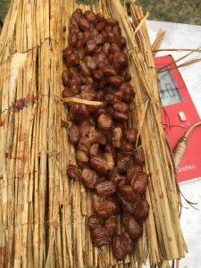 納豆の燻製