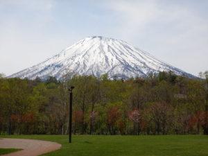 京極キャンプ場からの羊蹄山