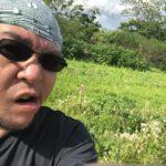 俺氏プライベートキャンプ場を作る第7話「除草!スギナ戦争!」