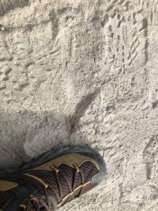 火山灰土壌が細かく乾燥しだした